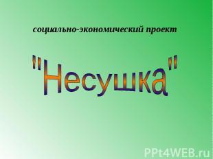 """социально-экономический проект """"Несушка"""""""