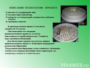 ОПИСАНИЕ ТЕХНОЛОГИИ ПРОЕКТА 1) покупка и складирование яиц; 2) закладка яиц в ин