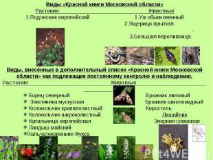 Виды «Красной книги Московской области» Растения Животные 1.Подлесник европейски