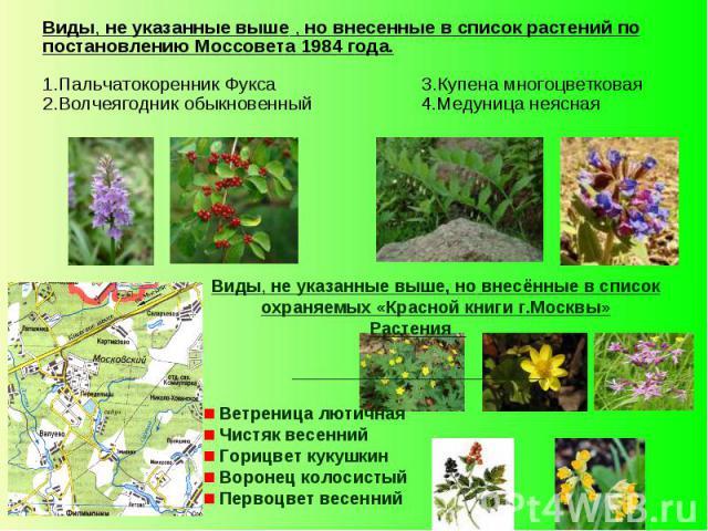 Виды, не указанные выше , но внесенные в список растений по постановлению Моссовета 1984 года. 1.Пальчатокоренник Фукса 3.Купена многоцветковая 2.Волчеягодник обыкновенный 4.Медуница неясная Виды, не указанные выше, но внесённые в список охраняемых …
