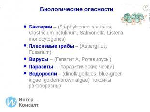 Бактерии – (Staphylococcus aureus, Clostridium botulinum, Salmonella, Listeria m