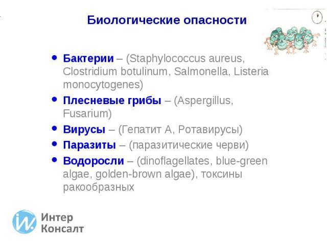 Бактерии – (Staphylococcus aureus, Clostridium botulinum, Salmonella, Listeria monocytogenes) Бактерии – (Staphylococcus aureus, Clostridium botulinum, Salmonella, Listeria monocytogenes) Плесневые грибы – (Aspergillus, Fusarium) Вирусы – (Гепатит А…