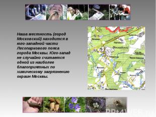 Наша местность (город Московский) находится в юго-западной части Лесопаркового п