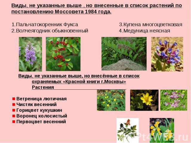 Виды, не указанные выше , но внесенные в список растений по постановлению Моссовета 1984 года. 1.Пальчатокоренник Фукса 3.Купена многоцветковая 2.Волчеягодник обыкновенный 4.Медуница неясная