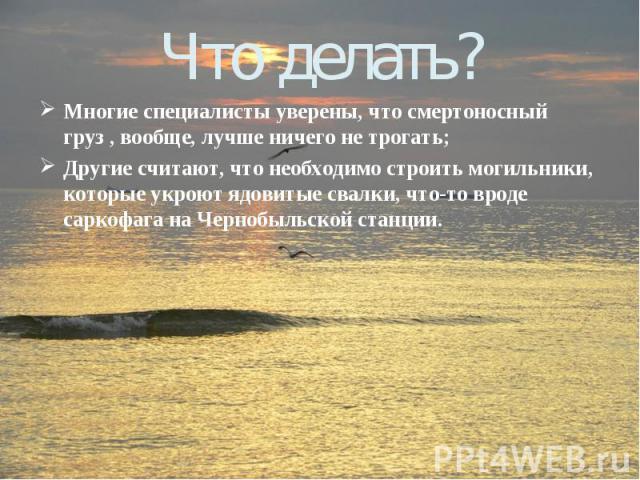 Что делать?Многие специалисты уверены, что смертоносный груз , вообще, лучше ничего не трогать; Другие считают, что необходимо строить могильники, которые укроют ядовитые свалки, что-то вроде саркофага на Чернобыльской станции.