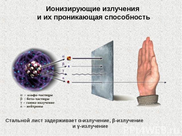 Ионизирующие излучения иихпроникающая способность Стальной лист задерживает α-излучение, β-излучение иγ-излучение