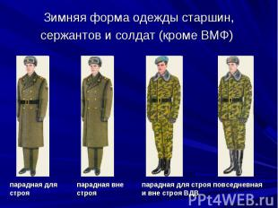 Зимняя форма одежды старшин, сержантов и солдат (кроме ВМФ) парадная для строя п