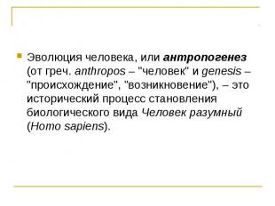 """Эволюция человека, или антропогенез (от греч. anthropos – """"человек"""" и genesis –"""