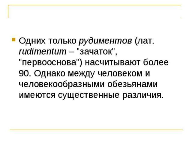 Одних только рудиментов (лат. rudimentum –