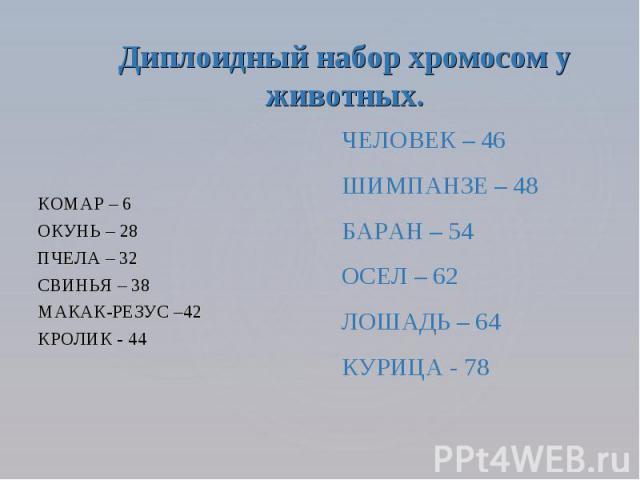 Диплоидный набор хромосом у животных. КОМАР – 6 ОКУНЬ – 28 ПЧЕЛА – 32 СВИНЬЯ – 38 МАКАК-РЕЗУС –42 КРОЛИК - 44 ЧЕЛОВЕК – 46 ШИМПАНЗЕ – 48 БАРАН – 54 ОСЕЛ – 62 ЛОШАДЬ – 64 КУРИЦА - 78