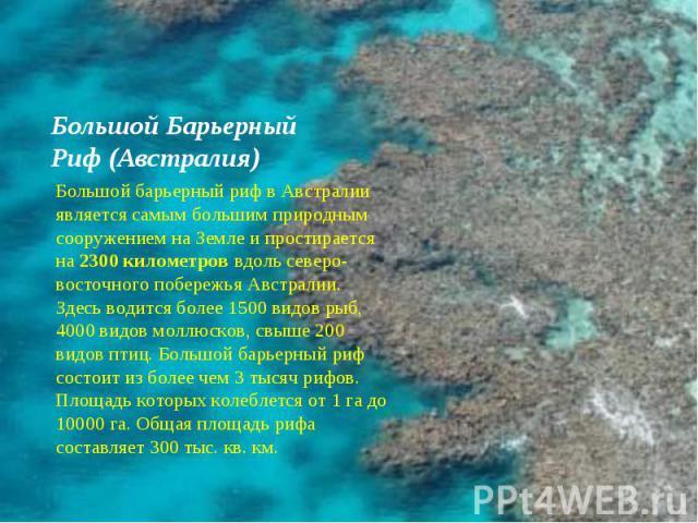 Большой Барьерный Риф (Австралия) Большой барьерный риф в Австралии является самым большим природным сооружением на Земле и простирается на 2300 километров вдоль северо-восточного побережья Австралии. Здесь водится более 1500 видов рыб, 4000 видов м…