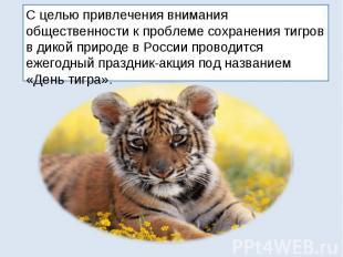 С целью привлечения внимания общественности к проблеме сохранения тигров в дикой
