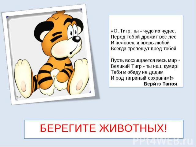 «О, Тигр, ты - чудо из чудес, Перед тобой дрожит вес лес И человек, и зверь любой Всегда трепещут пред тобой Пусть восхищается весь мир - Великий Тигр - ты наш кумир! Тебя в обиду не дадим И род тигриный сохраним!» БЕРЕГИТЕ ЖИВОТНЫХ!