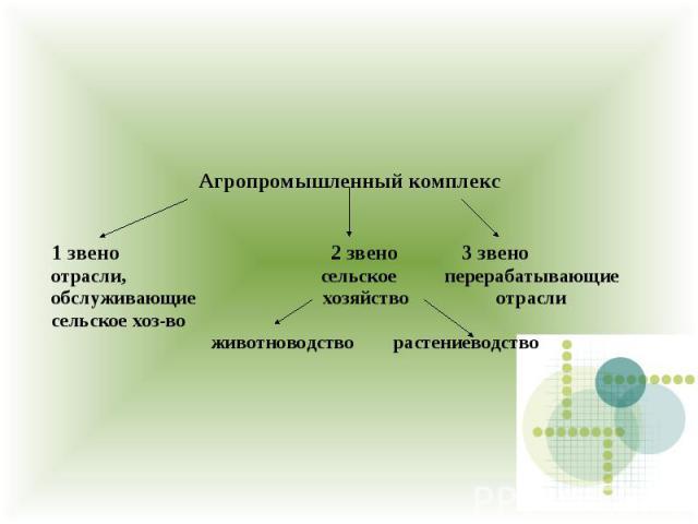 Агропромышленный комплекс 1 звено 2 звено 3 звено отрасли, сельское перерабатывающие обслуживающие хозяйство отрасли сельское хоз-во животноводство растениеводство