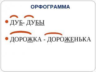 ОРФОГРАММА ДУБ- ДУБЫ ДОРОЖКА - ДОРОЖЕНЬКА