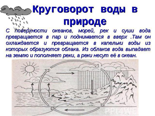 Круговорот воды в природе С поверхности океанов, морей, рек и суши вода превращается в пар и поднимается в вверх .Там он охлаждается и превращается в капельки воды из которых образуются облака. Из облаков вода выпадает на землю и пополняет реки, а р…