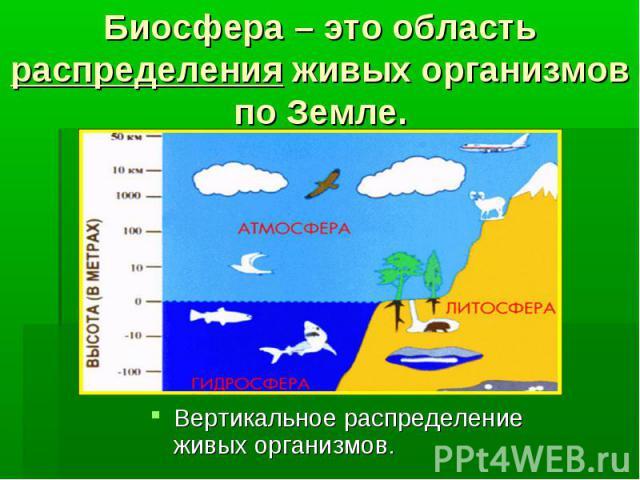 Биосфера – это область распределения живых организмов по Земле. Вертикальное распределение живых организмов.