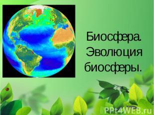 Биосфера. Эволюция биосферы.
