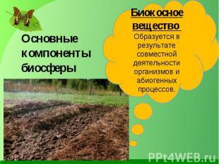 Основные компоненты биосферы Биокосное вещество Образуется в результате совместн