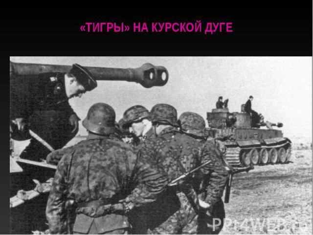 «Тигры» на Курской дуге