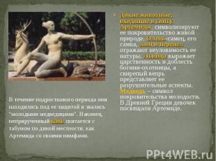 Дикие животные, входящие в свиту Артемиды, символизируют ее покровительство живо