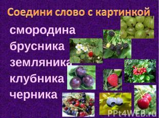 Соедини слово с картинкой смородина брусника земляника клубника черника