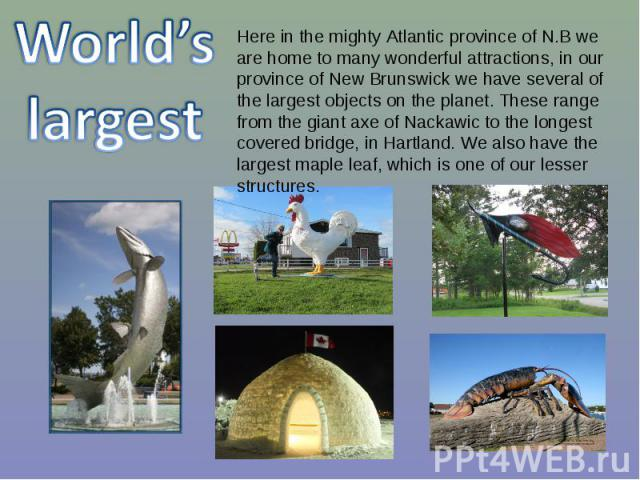 World's largest Here in the mighty Atlantic province of N.B we are home to many wonderful attractions, in our province of New Brunswick we have several of the largest objects on the planet. These range from the giant axe of Nackawic to the longest c…