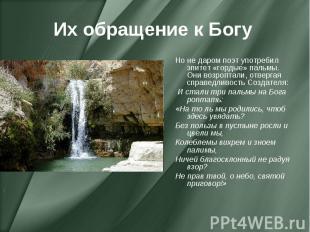 Их обращение к Богу Но не даром поэт употребил эпитет «гордые» пальмы. Они возро
