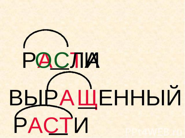 РАСТИ