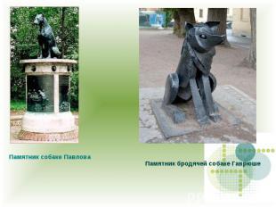 Памятник собаке Павлова Памятник бродячей собаке Гаврюше