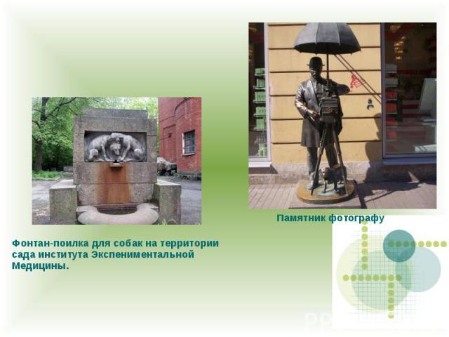 Фонтан-поилка для собак на территории сада института Экспениментальной Медицины. Памятник фотографу