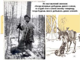Из наставлений эвенков: «Когда впервые добудешь дикого оленя, то отдай этого оле