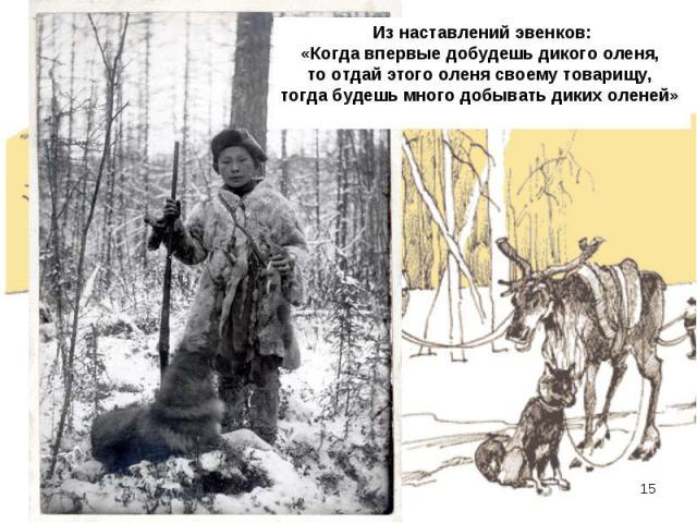 Из наставлений эвенков: «Когда впервые добудешь дикого оленя, то отдай этого оленя своему товарищу, тогда будешь много добывать диких оленей»