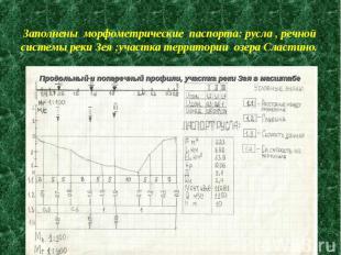 Заполнены морфометрические паспорта: русла , речной системы реки Зея ;участка те