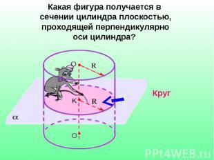 Какая фигура получается в сечении цилиндра плоскостью, проходящей перпендикулярн