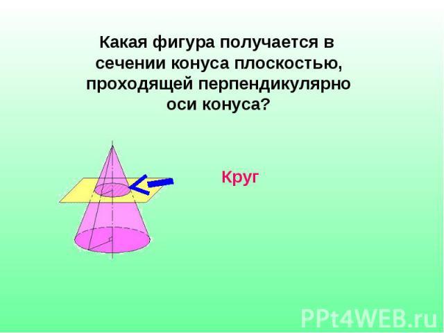Какая фигура получается в сечении конуса плоскостью, проходящей перпендикулярно оси конуса?