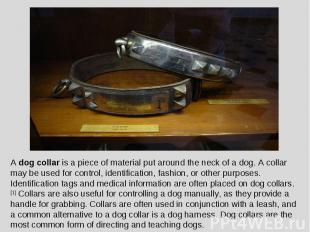 A dog collar is a piece of material put around the neck of a dog. A collar may b