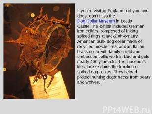 If you're visiting England and you love dogs, don't miss the Dog Collar Museum i