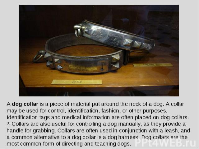 A dog collar is a piece of material put around the neck of a dog. A collar may be used for control, identification, fashion, or other purposes. Identification tags and medical information are often placed on dog collars.[1] Collars are also useful f…