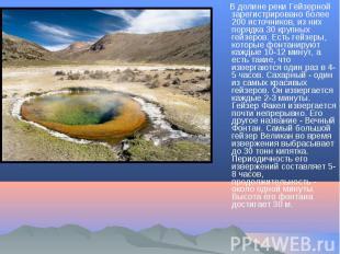 В долине реки Гейзерной зарегистрировано более 200 источников, из них порядка 30