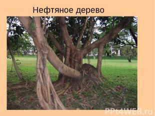 Нефтяное дерево