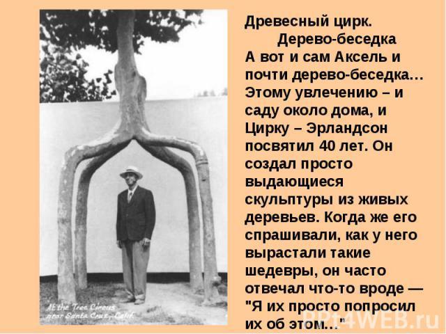 Древесный цирк. Дерево-беседка А вот и сам Аксель и почти дерево-беседка… Этому увлечению – и саду около дома, и Цирку – Эрландсон посвятил 40 лет. Он создал просто выдающиеся скульптуры из живых деревьев. Когда же его спрашивали, как у него выраста…
