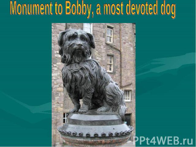 Monument to Bobby, a most devoted dog
