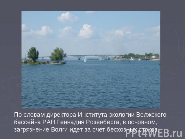По словам директора Института экологии Волжского бассейна РАН Геннадия Розенберга, в основном, загрязнение Волги идет за счет бесхозных стоков.