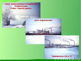 Сброс промышленных отходов ЦОФ «Берёзовская» Район «Черной дамбы» ЦОФ «Берёзовск
