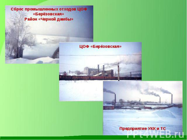 Сброс промышленных отходов ЦОФ «Берёзовская» Район «Черной дамбы» ЦОФ «Берёзовская» Предприятие УКК и ТС