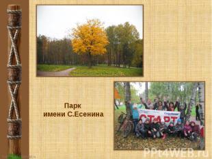Парк имени С.Есенина