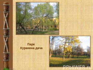 Парк Куракина дача