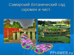 Самарский ботанический сад скромен и чист.