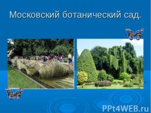 Московский ботанический сад.